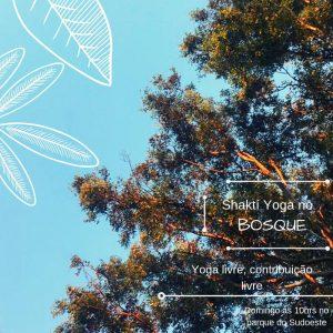 Yoga bosque Sudoeste ShaktiYogaBrasilia